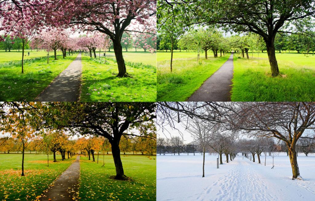Вот уж точно — весна, так весна…